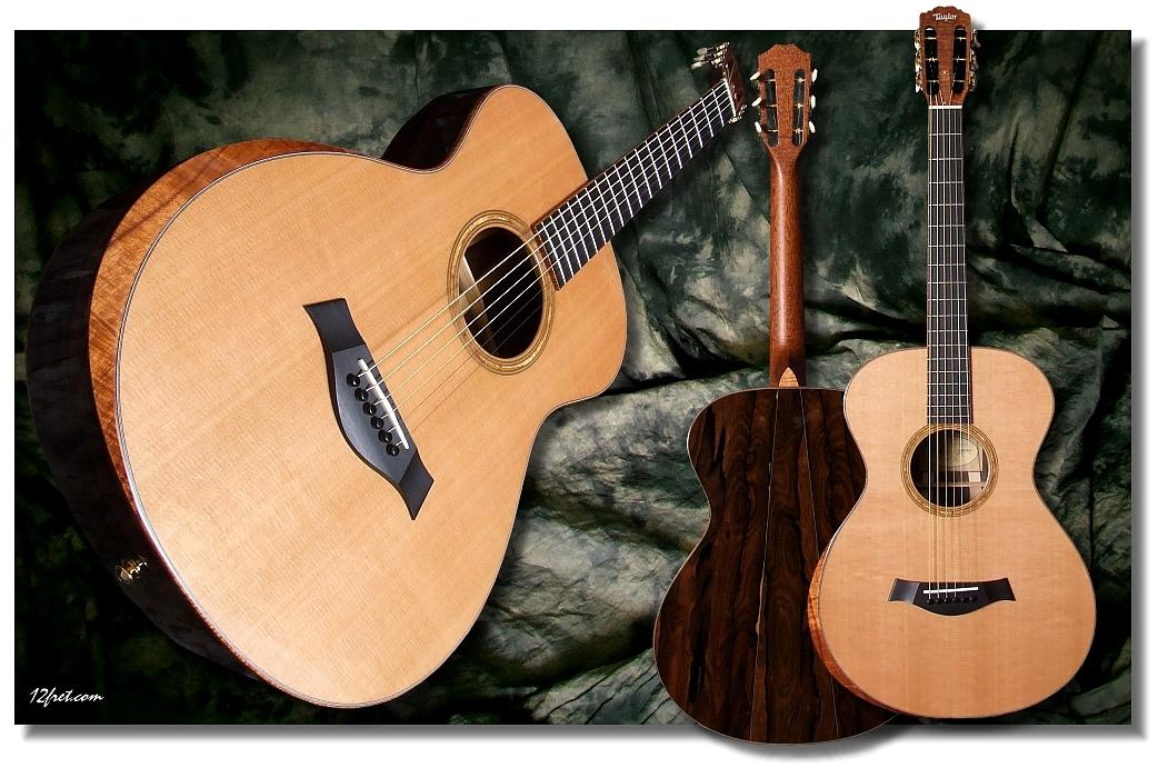 Taylor Acoustic Guitar...