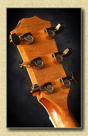 Taylor_616CE_guitar_b