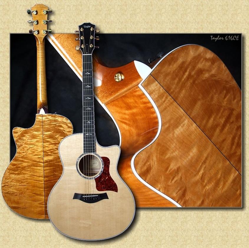 Taylor_616CE_guitar