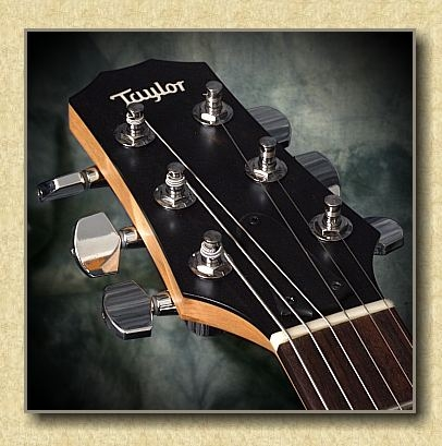 Taylor_Classic_Single_Coil_red_guitar_b