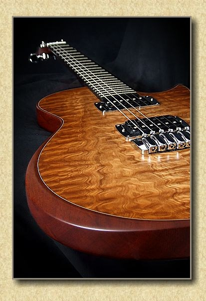 Taylor_Standard_Solidbody_Electric_guitar_b