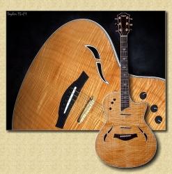 Taylor_T5_C1_guitar