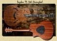 Taylor_T5_Ltd_Ovangkol