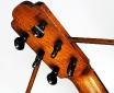 Telesforo_Julve_lyra_guitar_1900_cons_head_rear_1