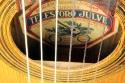 Telesforo_Julve_lyra_guitar_1900_cons_label_2