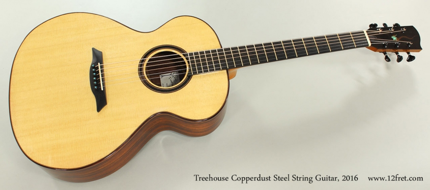 Treehouse Copperdust Steel String Guitar, 2016 Full Front View
