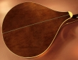 trinty-college-octave-mandolin-used-back-1