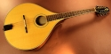 trinty-college-octave-mandolin-used-full-2