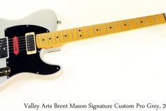 Valley Arts Brent Mason Signature Custom Pro Grey, 2005 Full Front View