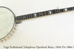 Vega Professional Tubaphone Openback Banjo, 1920s Pot 1960s Neck Full Front View