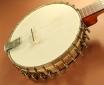 Vega Whyte Ladyie Longneck Banjo top