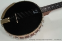 Vega Woodsongs Campfire Long Neck Banjo top