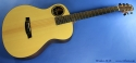Walden B-1E Baritone Acoustic Electric full front view