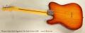 Warren Arlen Roth Signature Tele Style Guitar, 2007 Full Rear View