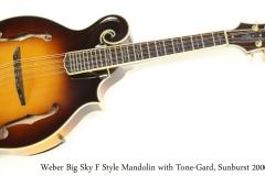 Weber Big Sky F Style Mandolin with Tone-Gard, Sunburst 2000 Full Front View
