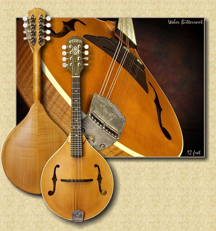Weber_Bitterroot_mandolin_07