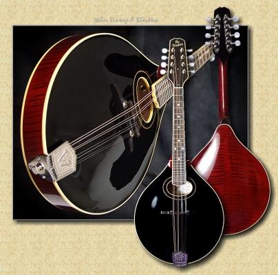 Weber_Vintage_A_mandolin_blacktop