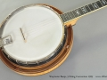 Weymann Banjo 5 String Conversion 1925 top