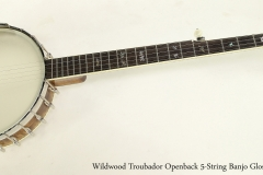 Wildwood Troubador Openback 5-String Banjo Gloss Finish  Full Front View