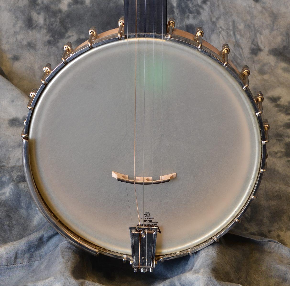 Wildwood Minstrel Open Back Banjo Top View