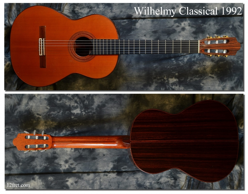Wilhelmy_Classical_1992(C)