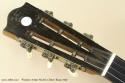 Windsor Artiste Model 4 Zither Banjo 1920 head fron