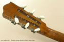 Windsor Artiste Model 4 Zither Banjo 1920 head rear