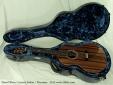 Wren Concert Sinker 2012 case open