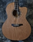 Wren_Concert CW Sapele_2011(used)_top