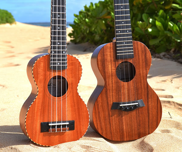 10% OFF ALL NEW IN-STOCK UKULELES - Holiday Sale - The Twelfth Fret