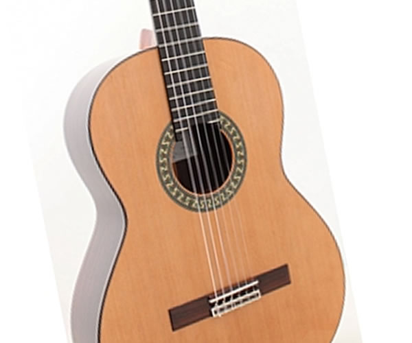 ALHAMBRA 5P STUDENT MODEL - Holiday Special - The Twelfth Fret