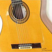 Alhambra Golepeador - The Twelfth Fret
