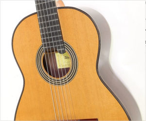 Alhambra Professional Model - The Twelfth Fret