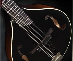 Collings Custom MT Blackface Mandolin - The Twelfth Fret