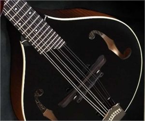 Collings Custom MT Blackface Mandolin