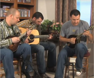Collings Guitars and Mandolins in Action!