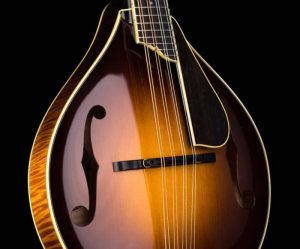 Collings MT2 Varnish Mandolin - The Twelfth Fret