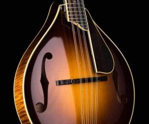 Collings MT2 V Mandolin Varnish A-Style