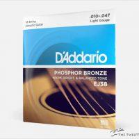 D'Addario 12-String Acoustic Guitar Phosphor Bronze EJ38 -The Twelfth Fret