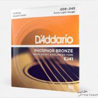 D'Addario EJ41 Phosphor Bronze Extra Light 12-String Acoustic Strings - The Twelfth Fret
