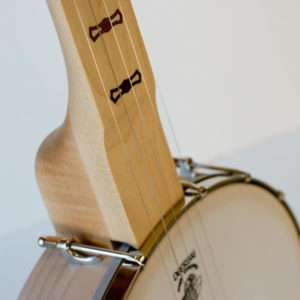 Deering Goodtime Fretless Banjos - The Twelfth Fret