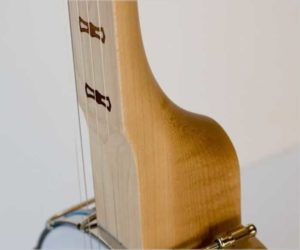 Deering Goodtime Fretless and Scooped Openback Banjo