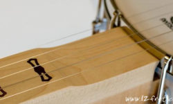 Deering Goodtime Fretless Banjos - The Twelfth Fret