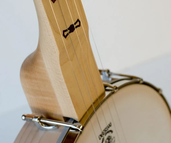 Deering Goodtime Fretless and Scooped Openback Banjo - Holiday Sale- The Twelfth Fret