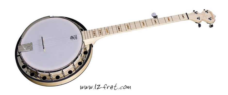 Deering Goodtime Two Banjo - The Twelfth Fret