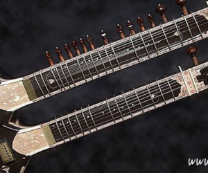 Double Neck Electric Sitar : David Hill & Brady Milloy
