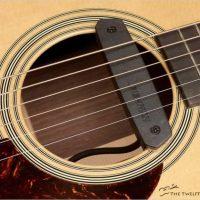 Fishman Neo-D Acoustic Soundhole Humbucker Pickup - The Twelfth Fret
