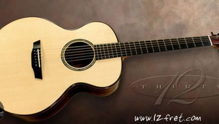G.W. Modified Concert Zircote Steel String Guitar - The Twelfth Fret