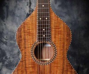 Michael Dunn Weissenbourn Hawaiian Guitars - The Twelfth Fret