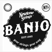 Newtone Tenor Banjo Strings - The Twelfth Fret